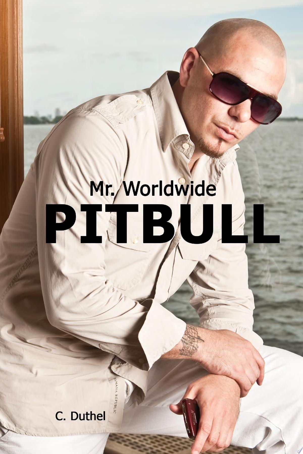 Pitbull   Mr  Worldwide
