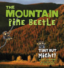 The Mountain Pine Beetle