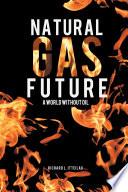 Natural Gas Future