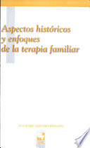 Aspectos Hist Ricos Y Enfoques De La Terapia Familiar