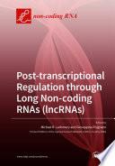 Post transcriptional Regulation through Long Non coding RNAs  lncRNAs