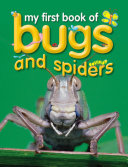 My First Book of Bugs   Spiders