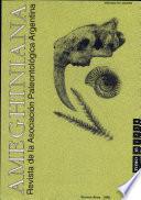 1999 - Vol. 36,N.º 4
