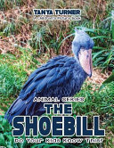 The Shoebill Do Your Kids Know This?
