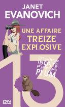 Pdf Une affaire treize explosive