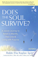 Does the Soul Survive? 2nd Edition