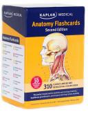 Anatomy Flashcards