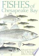 FISHES CHESAPEAKE BAY PB