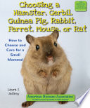 Choosing a Hamster, Gerbil, Guinea Pig, Rabbit, Ferret, Mouse, or Rat