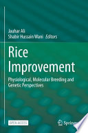 Rice Improvement
