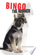 Bingo the Winner