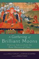 A Gathering of Brilliant Moons Pdf/ePub eBook