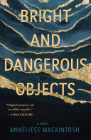 Bright and Dangerous Objects Pdf
