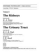 The Kidneys