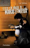 C'est la faute à Mario Lemieux T2 Pdf/ePub eBook