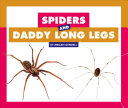 Spiders and Daddy Long Legs