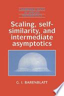 Scaling  Self similarity  and Intermediate Asymptotics Book