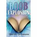 Boob Explosion ebook