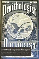 The Ornithologist and O  logist