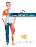 Introduction to Anatomy & Physiology: The Musculoskeletal System Vol 1 ebook