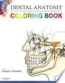 Dental Anatomy Coloring Book - Saunders - Google Books