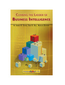 Climbing the Ladder of Business Intelligence