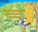 Books - Emabhanana Emntfwana Wemfene | ISBN 9780521722902