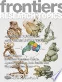 Adaptive Function and Brain Evolution