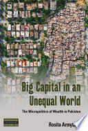 Big Capital in an Unequal World Book PDF