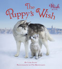 The Puppy's Wish Pdf