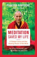 Meditation Saved My Life