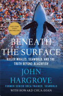 Pdf Beneath the Surface