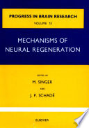 Mechanisms Of Neural Regeneration