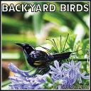 Backyard Birds Calendar 2021