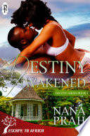 Destiny Awakened  Destiny African Romance  4