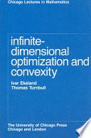 infinite dimensional optimization and control theory fattorini hector o