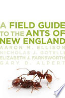 A Field Guide to the Ants of New England Book