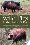Wild Pigs in the United States