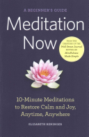 Meditation Now  A Beginner s Guide Book PDF