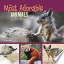 The Most Adorable Animals in the World
