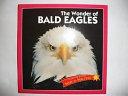 The Wonder of Bald Eagles