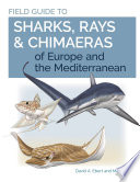 Field Guide to Sharks  Rays   Chimaeras of Europe and the Mediterranean