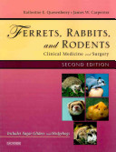 Ferrets Rabbits And Rodents Book PDF