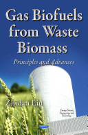Gas Biofuels from Waste Biomass