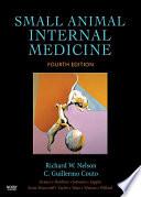 Small Animal Internal Medicine E Book Book PDF