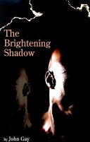 The Brightening Shadow