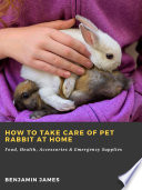 How to Take Care of Pet Rabbit at Home  Food  Health  Accessories   Emergency Supplies