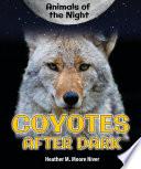 Coyotes After Dark