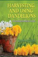 Harvesting and Using Dandelions