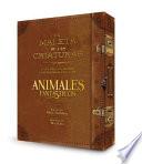 La Magia Cinematográfica de Animales Fantásticos y dónde Encontrarlos